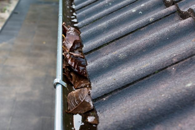 Spring Gutter Maintanance