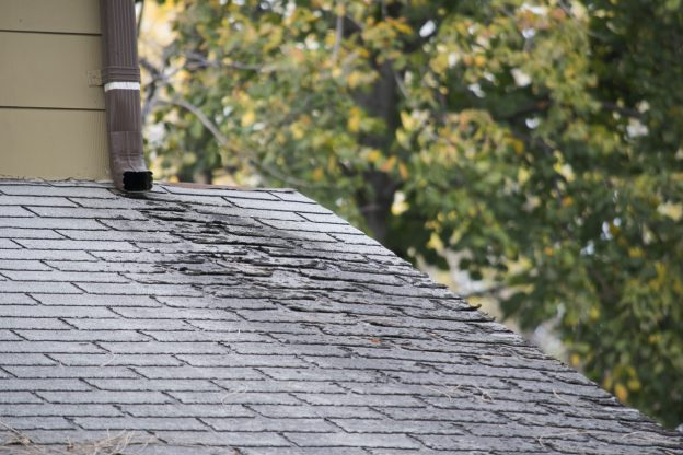 Roof Spring Cleaning